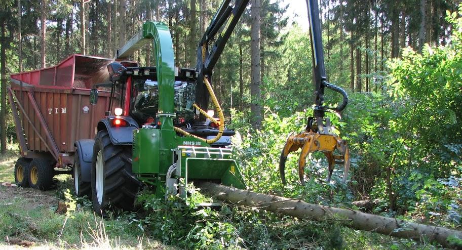 300f2 portræt i skoven Tigeren 2