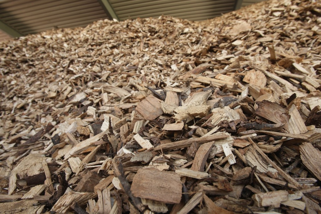 JUEHNDE, GERMANY - AUGUST 14: Dried wood chips lie in a pile at a local bioenergy plant August 14, 2007 at the village of Juehnde, Germany. Juehnde is the first village in Germany to become energy self-sufficient by building its own bioenergy electrical plant, which uses wood chips, cow dung and plant remains gathered from the community to create electicity and heat. Interest in bioenergy has grown as a means to cut greenhouse gas emissions. (Photo by Sean Gallup/Getty Images)